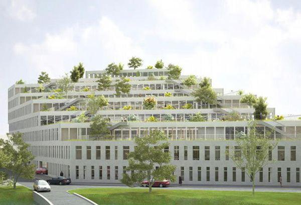 Tư vấn thiết kế trụ sở làm việc với không gian xanh đẹp thông thoáng tiện nghi.