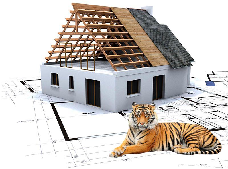 Xem năm xây nhà cho người sinh năm 1986